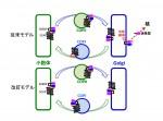 SREBP-SCAP二重体の小胞体-ゴルジ装置間輸送の改訂モデル